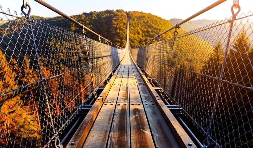 Geierlay Hängebrücke - schöne Orte Deutschland