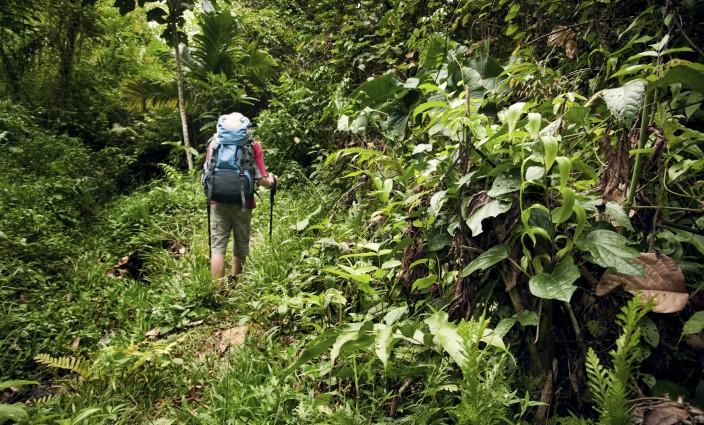 Wandern in den Tropen Insektenschutz