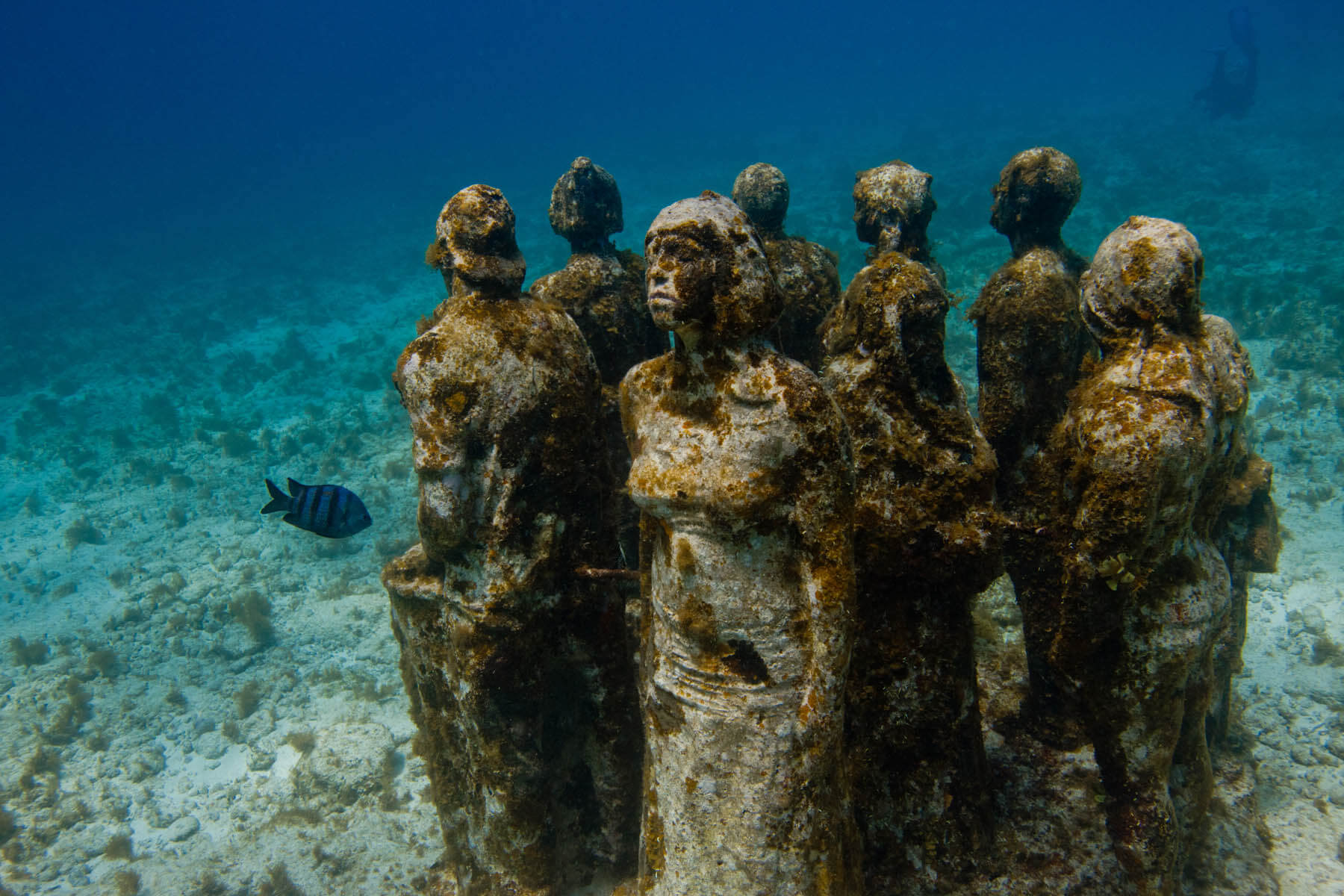 silent-evolution-ii-sculptures-musa-jason-decaires-taylor