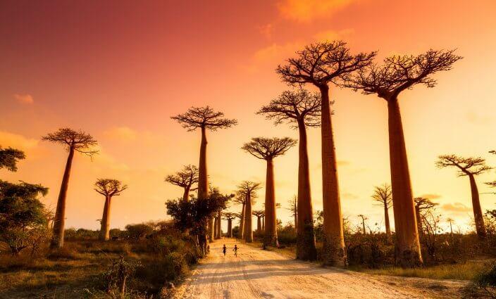 Madagaskar Impfungen und andere Prophylaxe