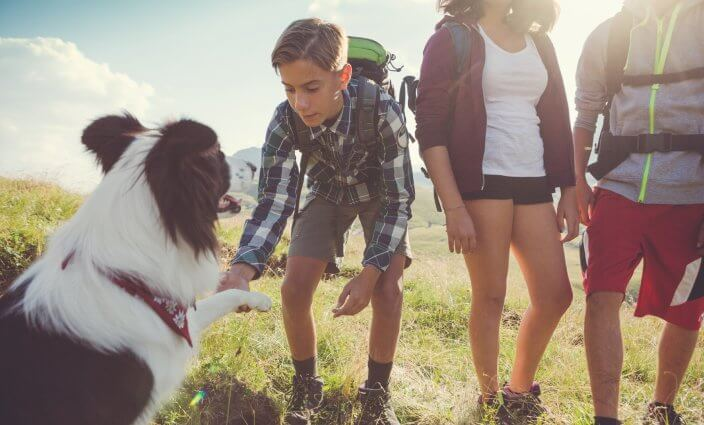 vor Zecken schützen in den Bergen beim Wandern in der Natur